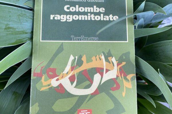 """Intervista di Renzo Montagnoli a Mohamed Ghonim """"Colombe Raggomitolate"""""""